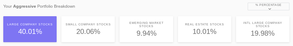 Acorns Aggressive Investment Portfolio