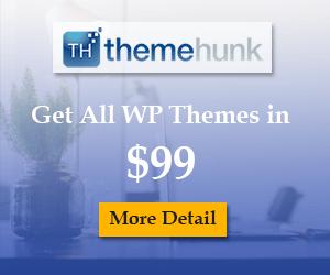 ThemeHunk WordPress Themes